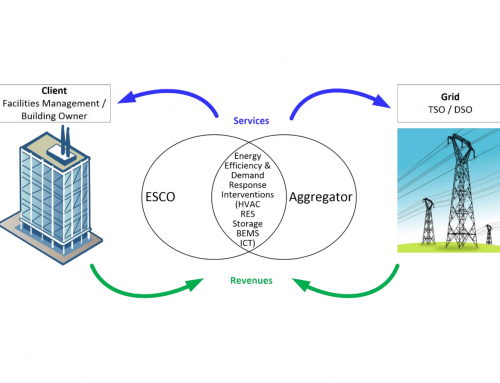 Energy Efficiency with Demand Response: Can a Single Business Model Solve Both Problems?